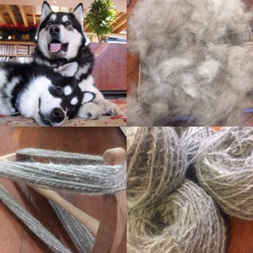 Yarn made from Malamute dog hair