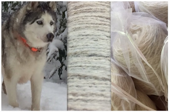 yarn made from husky dog hair